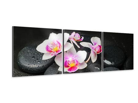 Panorama Aluminiumbild 3-teilig Feng-Shui-Orchidee Zen
