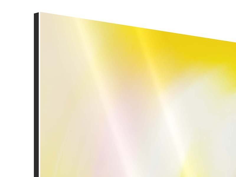 Panorama Aluminiumbild 3-teilig Abstrakte Farbkreise