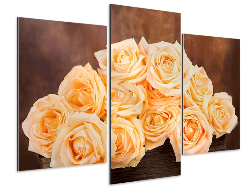 Aluminiumbild 3-teilig modern Die Rosenzeit