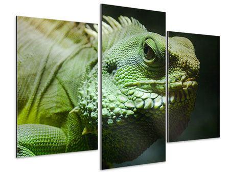 Aluminiumbild 3-teilig modern XXL Leguan