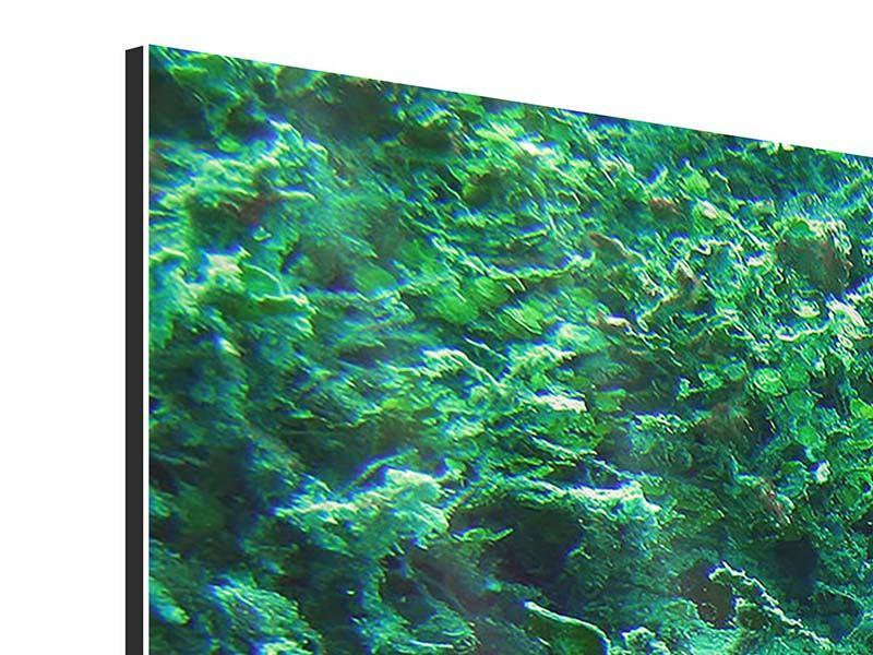 Aluminiumbild 3-teilig modern Korallen