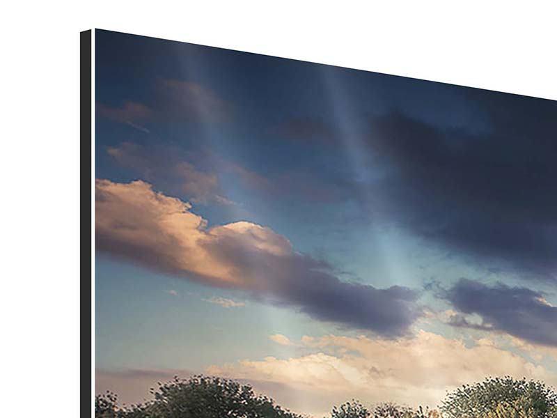 Aluminiumbild 3-teilig modern Die Wiesenmargerite am Fluss