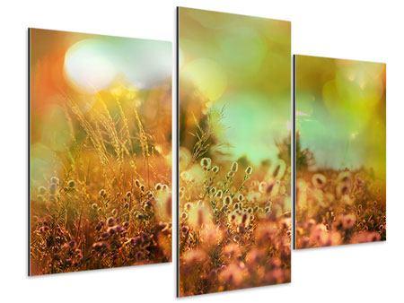 Aluminiumbild 3-teilig modern Blumenwiese in der Abenddämmerung