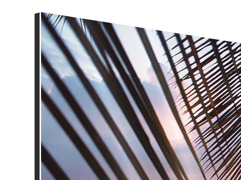 Aluminiumbild 3-teilig modern Unter Palmenblätter