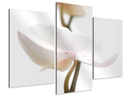 Aluminiumbild 3-teilig modern XXL Orchideenblüte