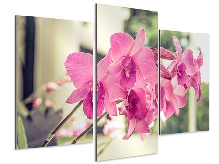 Aluminiumbild 3-teilig modern Ein Fensterplatz für die Orchideen