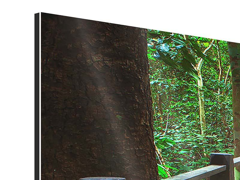 Aluminiumbild 3-teilig modern Die Brücke im Wald