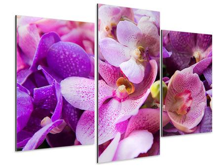 Aluminiumbild 3-teilig modern Im Orchideenparadies