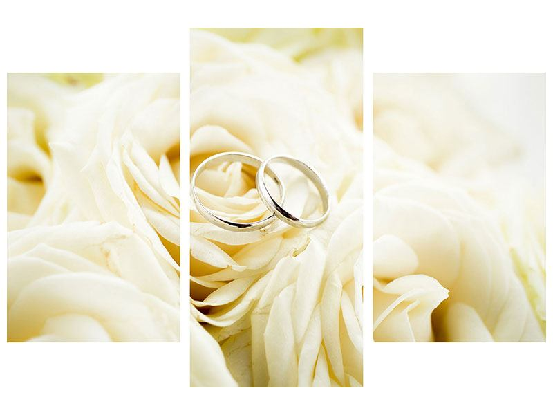 Aluminiumbild 3-teilig modern Trauringe auf Rosen gebettet