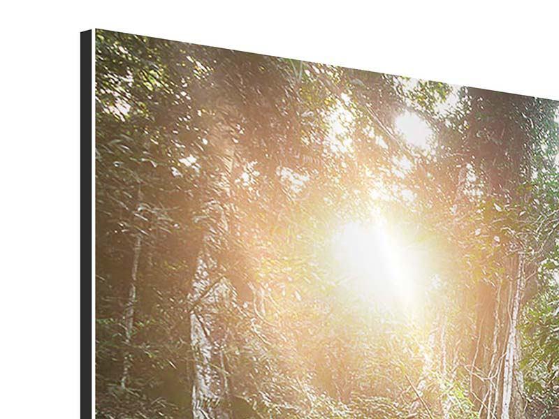 Aluminiumbild 3-teilig modern Naturschauspiel