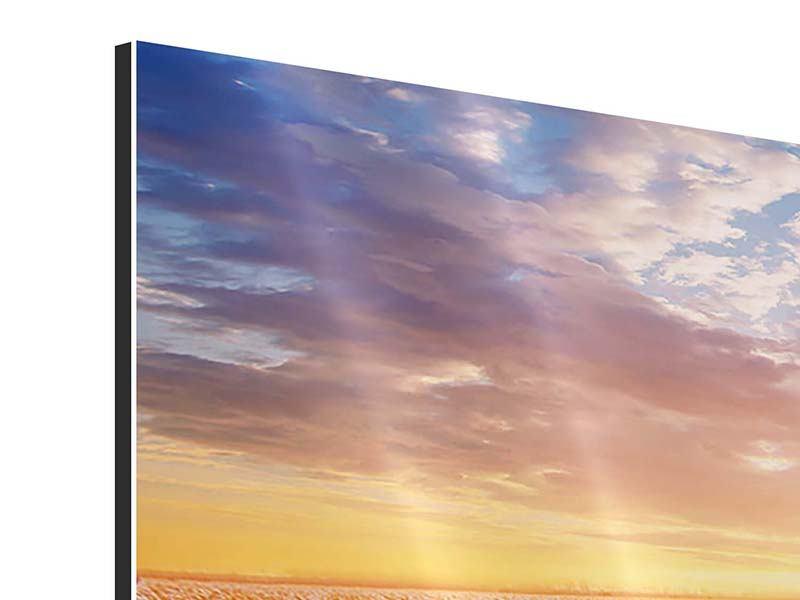 Aluminiumbild 3-teilig modern Sonnenaufgang bei den Tulpen