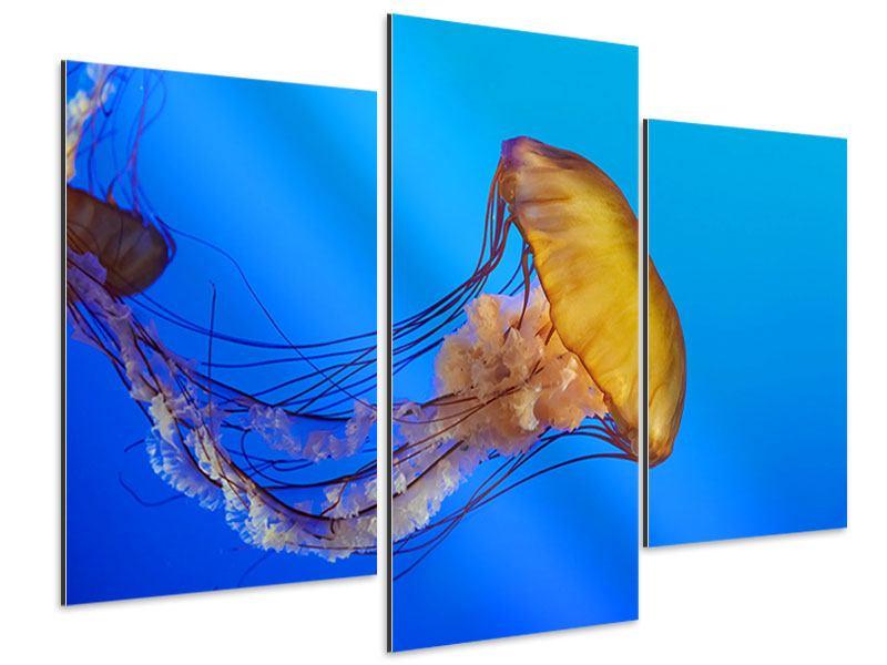 Aluminiumbild 3-teilig modern Medusa