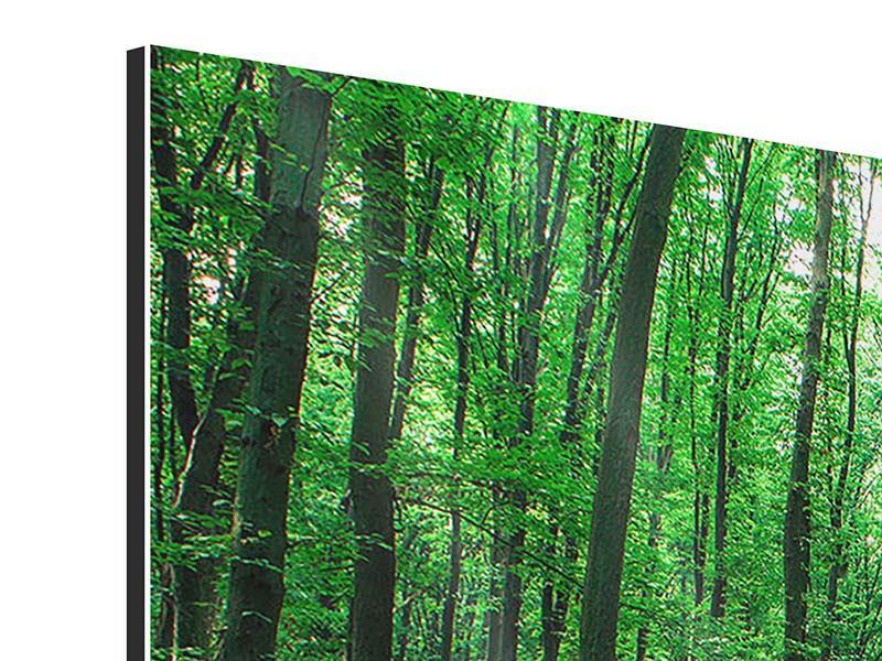 Aluminiumbild 3-teilig modern Tannenwald