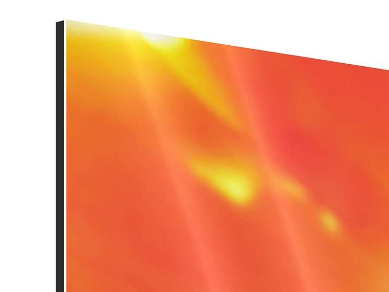 Aluminiumbild 3-teilig modern Die Narbe einer Tulpe XXL