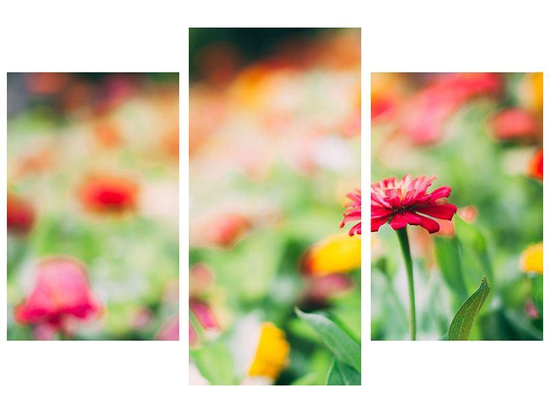 Aluminiumbild 3-teilig modern Im Blumengarten