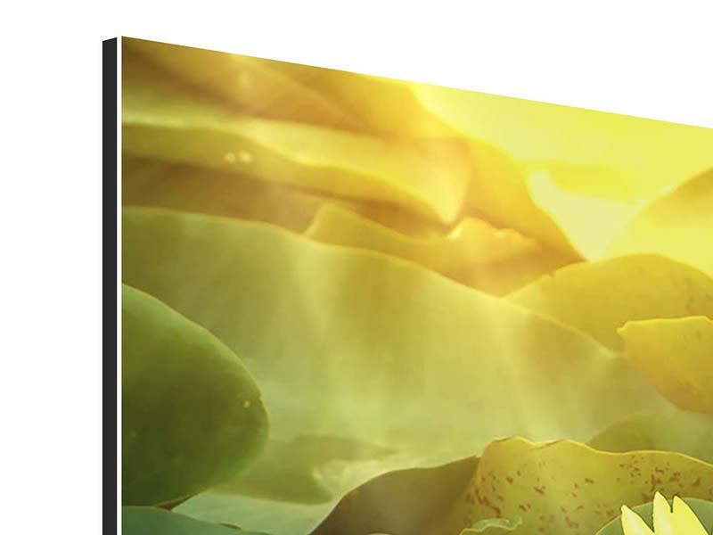 Aluminiumbild 3-teilig modern Wilde Lotus