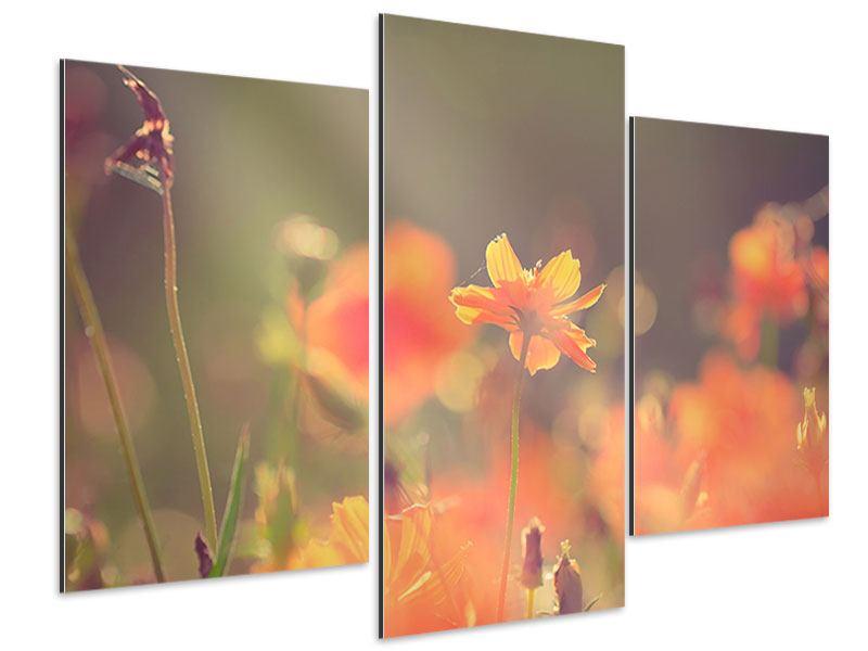 Aluminiumbild 3-teilig modern Blütenpracht