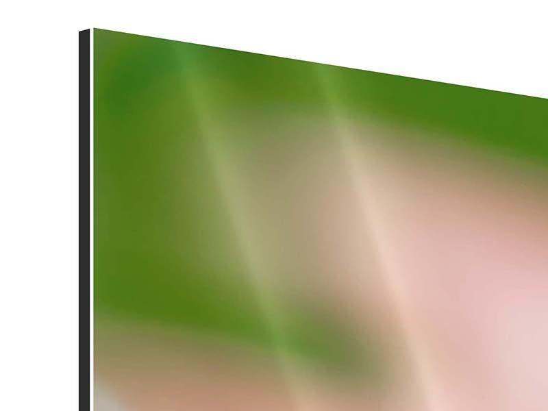Aluminiumbild 3-teilig modern Close Up einer Blüte