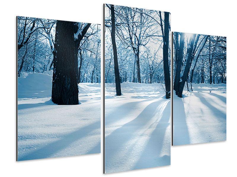 Aluminiumbild 3-teilig modern Der Wald ohne Spuren im Schnee