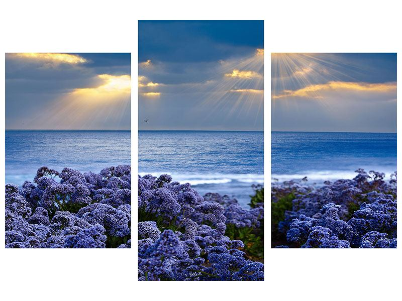 Aluminiumbild 3-teilig modern Der Lavendel und das Meer