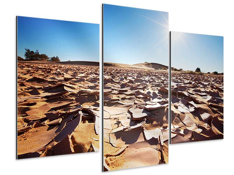 Aluminiumbild 3-teilig modern Dürre