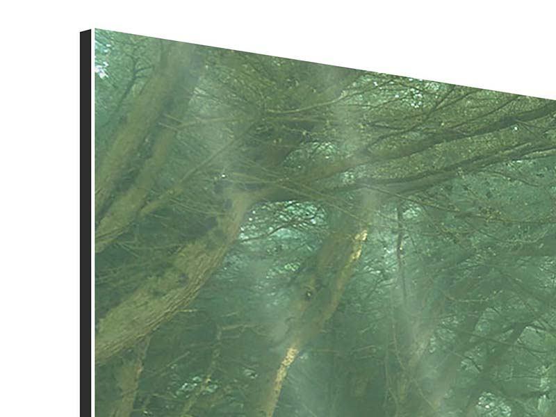 Aluminiumbild 3-teilig modern Die Allee