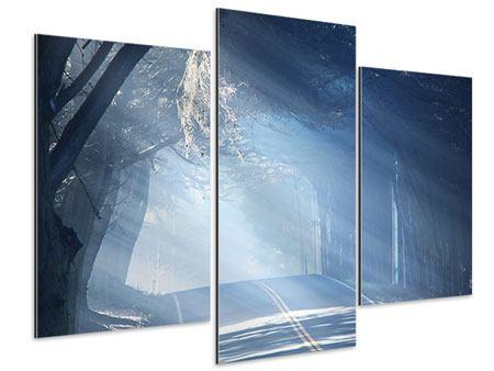 Aluminiumbild 3-teilig modern Lichtdurchflutete Baumallee