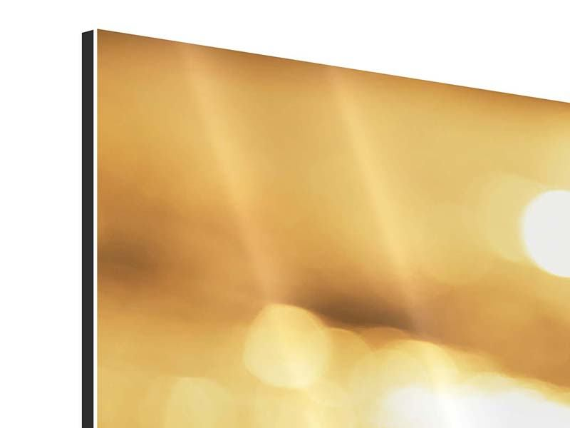 Aluminiumbild 3-teilig modern Der Seestern