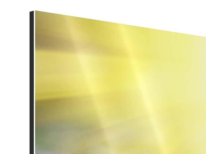 Aluminiumbild 3-teilig modern Blumige Wiese