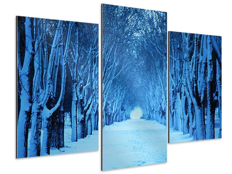 Aluminiumbild 3-teilig modern Winterbäume