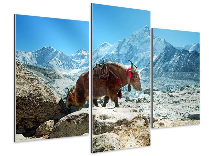 Aluminiumbild 3-teilig modern Das Himalaya-Gebirge
