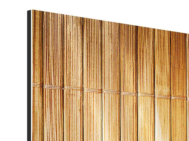 Aluminiumbild 3-teilig modern Bambusrohre