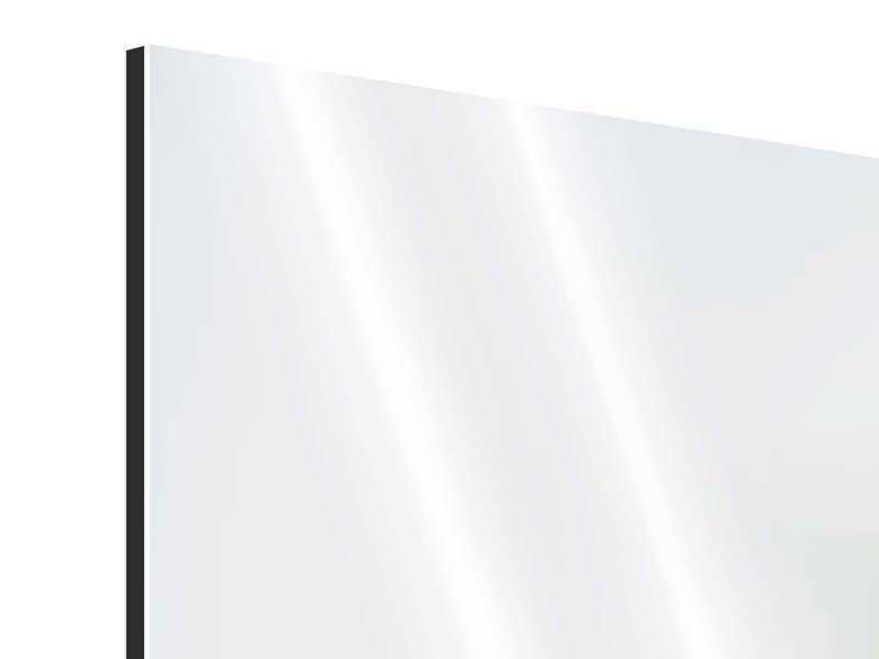 Aluminiumbild 3-teilig modern Die Hummel und die Blüte
