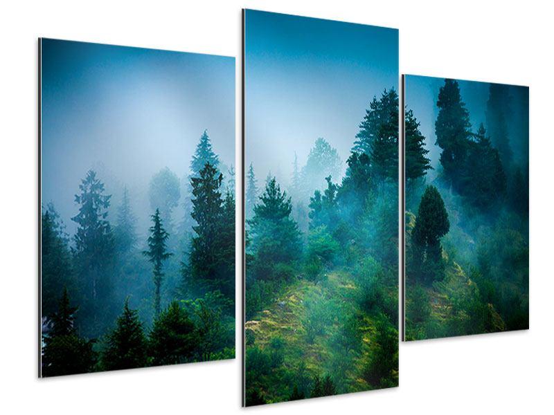 Aluminiumbild 3-teilig modern Geheimnisvoller Wald