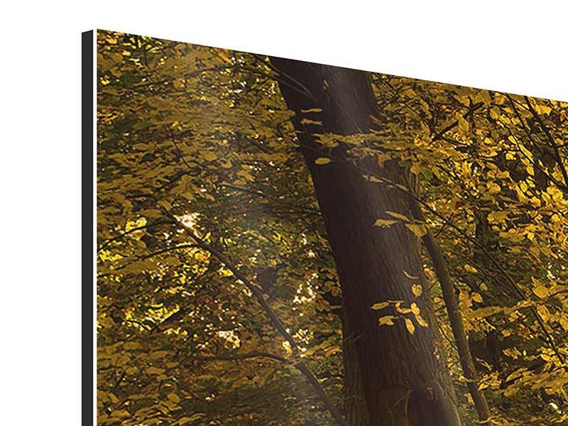 Aluminiumbild 3-teilig modern Herbstlaub
