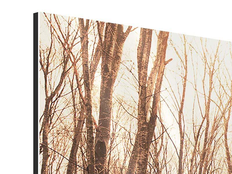 Aluminiumbild 3-teilig modern Der kahle Wald