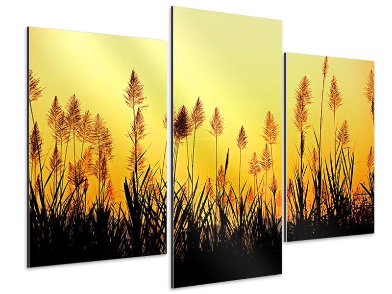 Aluminiumbild 3-teilig modern Die Blumen des Feldes