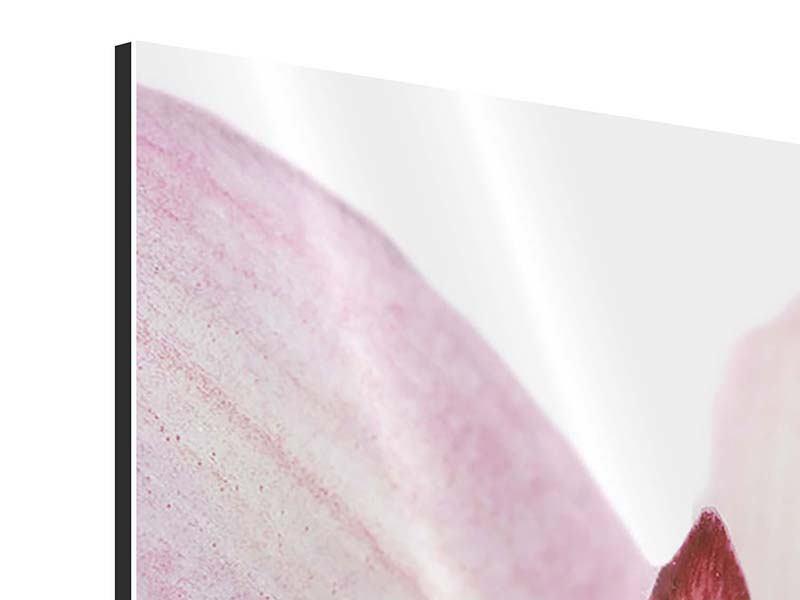 Aluminiumbild 3-teilig modern Orchideenblüte XXL