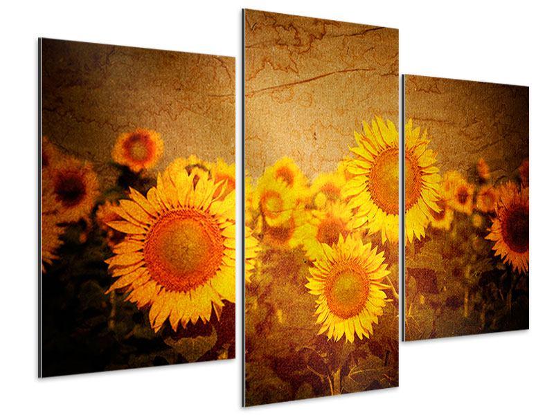 Aluminiumbild 3-teilig modern Retro-Sonnenblumen