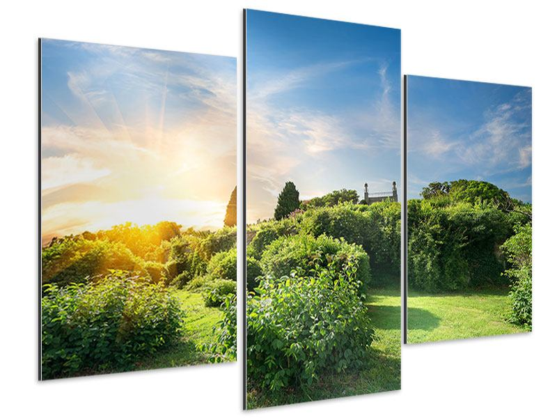 Aluminiumbild 3-teilig modern Sonnenaufgang im Park