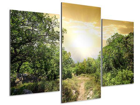 Aluminiumbild 3-teilig modern Am Ende des Waldes