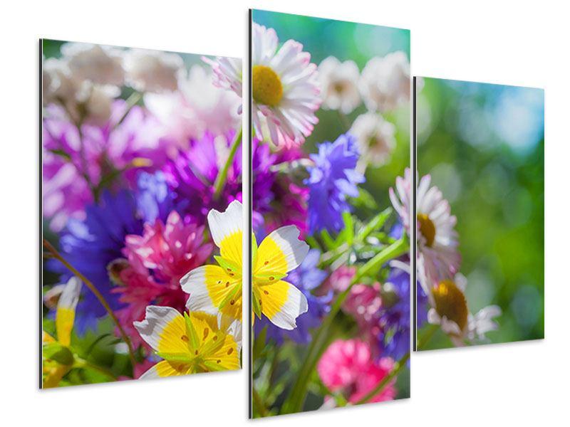 Aluminiumbild 3-teilig modern XXL Gartenblumen