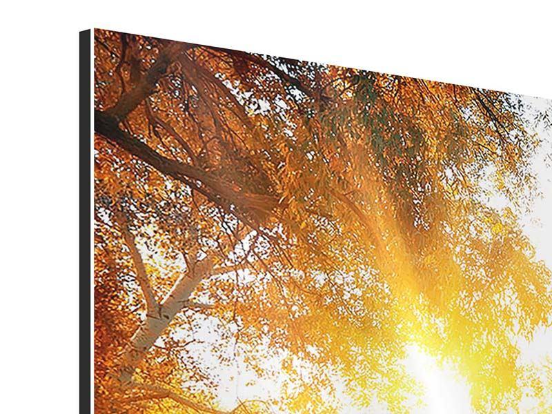 Aluminiumbild 3-teilig modern Waldspiegelung im Wasser