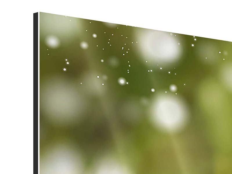 Aluminiumbild 3-teilig modern Lilien-Lichtspiel
