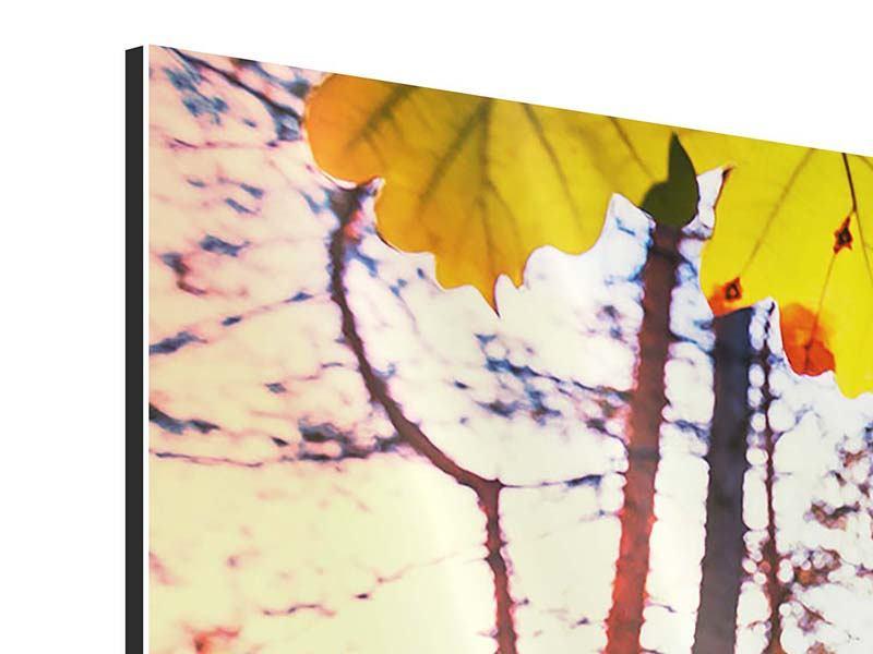 Aluminiumbild 3-teilig modern Herbst