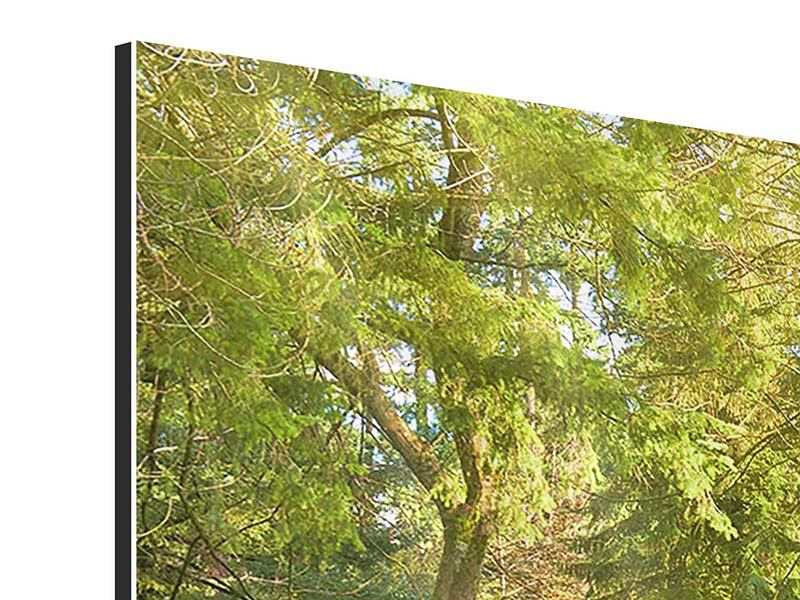 Aluminiumbild 3-teilig modern Im Park