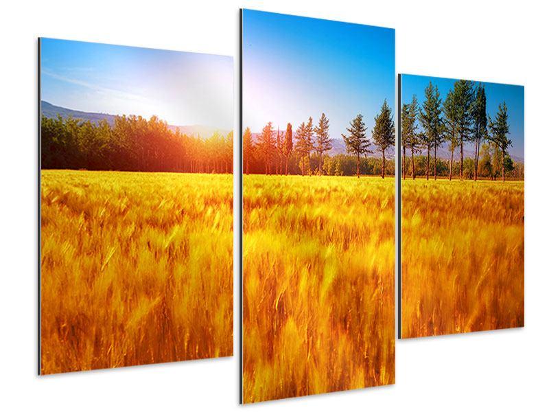 Aluminiumbild 3-teilig modern Der Herbst