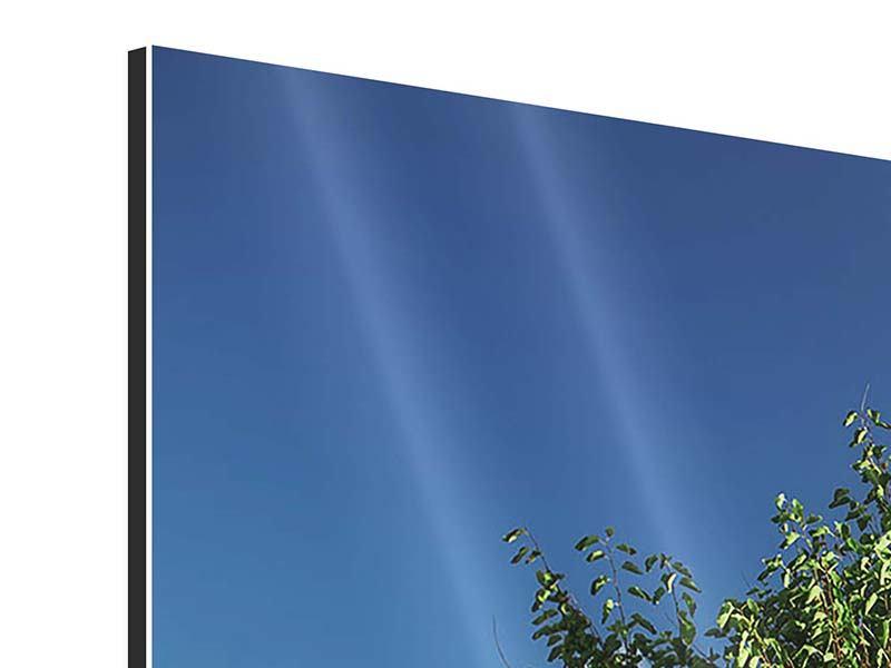 Aluminiumbild 3-teilig modern Baum im Grün