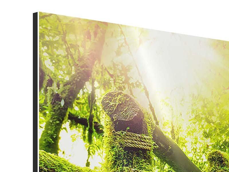 Aluminiumbild 3-teilig modern Moos