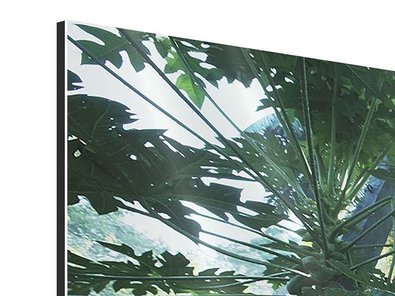 Aluminiumbild 3-teilig modern Dschungelstar